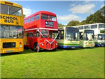 SD8203 : 2014 Trans Lancs Rally, Heaton Park by David Dixon