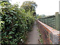 ST2994 : Wooden fence, brick wall and rank brambles alongside a Cwmbran path  by Jaggery