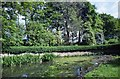 TA1828 : Ivy Lane, Hedon, Yorkshire by Bernard Sharp