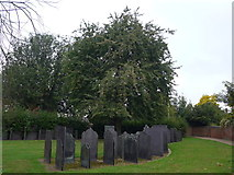 SK5319 : An early morning visit to Loughborough Parish Church (8) by Basher Eyre