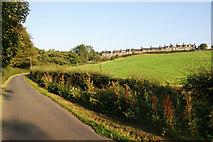 NZ7805 : Lane below Carr End by Bill Boaden