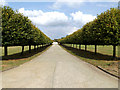 TL7965 : Entrance to Risby Business Park by Adrian Cable