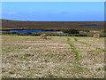 NR2164 : Loch Clach a' Bhuàile by Oliver Dixon