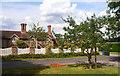 SU8180 : House and  Bishop's Oak by Des Blenkinsopp