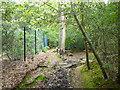 TQ0289 : Footpath from Slade Oak Lane to Marish Lane by Robin Webster