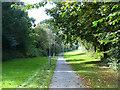 NT5115 : Waverley Walk, Hawick by Oliver Dixon