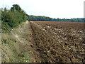 TF1101 : Farmland near Castor Hanglands Nature Reserve by Richard Humphrey
