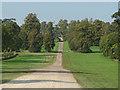 SU9746 : Loseley Park by Alan Hunt