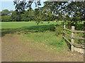 SU9746 : Farmland, Loseley Park by Alan Hunt