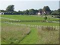 TQ0852 : Paddocks, West Horsley by Alan Hunt