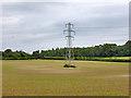 SU7445 : Pylon in field by Robin Webster