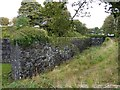 SX4859 : A corner of the wall and ditch of Crownhill Fort by David Smith