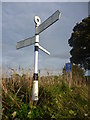 NT5565 : East Lothian County Council Fingerposts : Hopes Road-end by Richard West