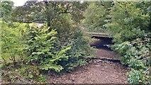 SK0955 : River Manifold from Darfar Bridge by Chris Morgan