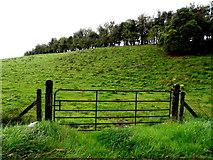 H6357 : Gate, Grange by Kenneth  Allen
