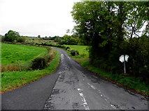 H6556 : Cravenny Road, Cravenny Irish by Kenneth  Allen