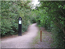 TQ5786 : Path from Pike Lane to Thames Chase Forest Centre by Roger Jones