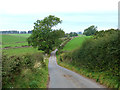 NY6041 : Lane north of Gamblesby by Oliver Dixon