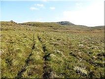 NM9301 : Quadbike tracks by Richard Webb