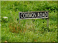 TM2290 : Common Road sign by Adrian Cable