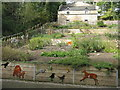 NT2470 : Hermitage of Braid Doocot and Community Wildlife Garden by M J Richardson