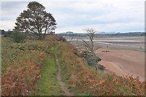 NT6378 : John Muir Way, Tyne Estuary by Jim Barton
