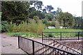 SX8962 : Overgrown park by Richard Dorrell