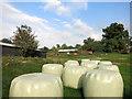 TQ1653 : Big Bales at Swanworth Farm by Des Blenkinsopp