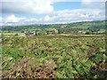 SE1540 : The hamlet of Low Hill, Baildon Moor by Christine Johnstone