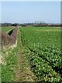 SO7597 : Public footpath north of Worfield, Shropshire by Roger  Kidd