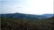 SO2220 : The Sugar Loaf from Crug Hywel by Jeremy Bolwell