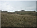 NY5600 : Moorland pastures on Whinfell Common by Karl and Ali