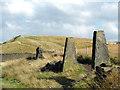 SD9613 : Stone Gateposts by Stephen Burton
