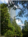 TQ3780 : London Cityscape : In Jubilee Park, Canary Wharf by Richard West