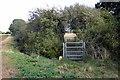 TL0945 : Footbridge on the path to Pasture Farm by Philip Jeffrey