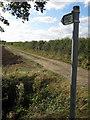 TL1045 : Bridleway to Cotton End by Philip Jeffrey