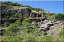 ST4654 : Cheddar Gorge by Anne Burgess