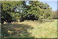SJ2637 : Offa's Dyke on the Chirk Castle Estate by Jeff Buck