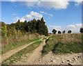 SU4284 : Ridgeway Down, a Good Name by Des Blenkinsopp