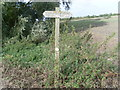 SP8610 : Signpost in a field near Weston Turville by David Hillas