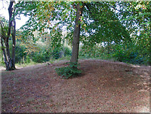 TQ6895 : Burial Mound, Norsey Wood by Roger Jones