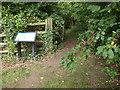 ST6178 : Entrance to Splatts Abbey Wood by Derek Harper