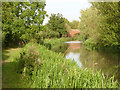 SK7285 : Chesterfield Canal at Hayton by Alan Murray-Rust