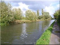 TQ1684 : Paddington Arm of the Grand Union Canal near Horsenden Hill by Marathon