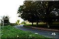 TL7347 : Hundon Road, Hundon by Adrian Cable