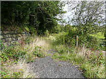 SE0026 : Footpaths at the end of Burlees Lane by Humphrey Bolton