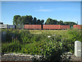 SP3692 : Container train at Nuneaton by Stephen Craven