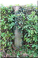SE2586 : Concrete post in hedge near High Ash Bank by Roger Templeman