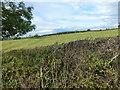 TF0622 : Ridge and Furrow by Bob Harvey