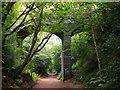 SO8793 : Road bridge over Staffordshire Railway Walk by Stephen Rogerson